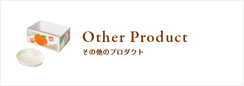 Other Product