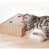 nyancoroby Box